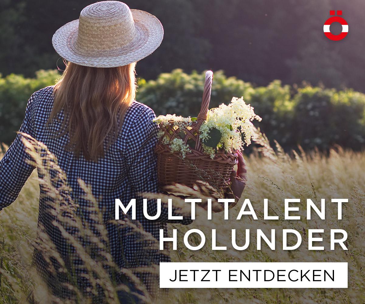 Multitalent Holunder
