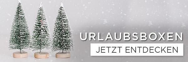 Ausflüge und Urlaube zu Weihnachten schenken - shöpping.at
