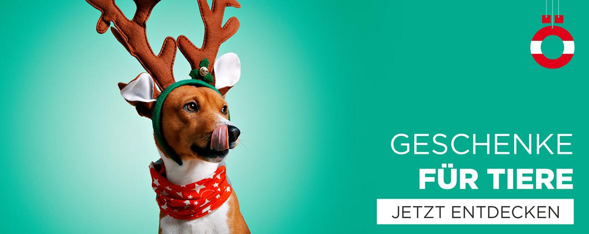 Weihnachtsgeschenke für Tiere