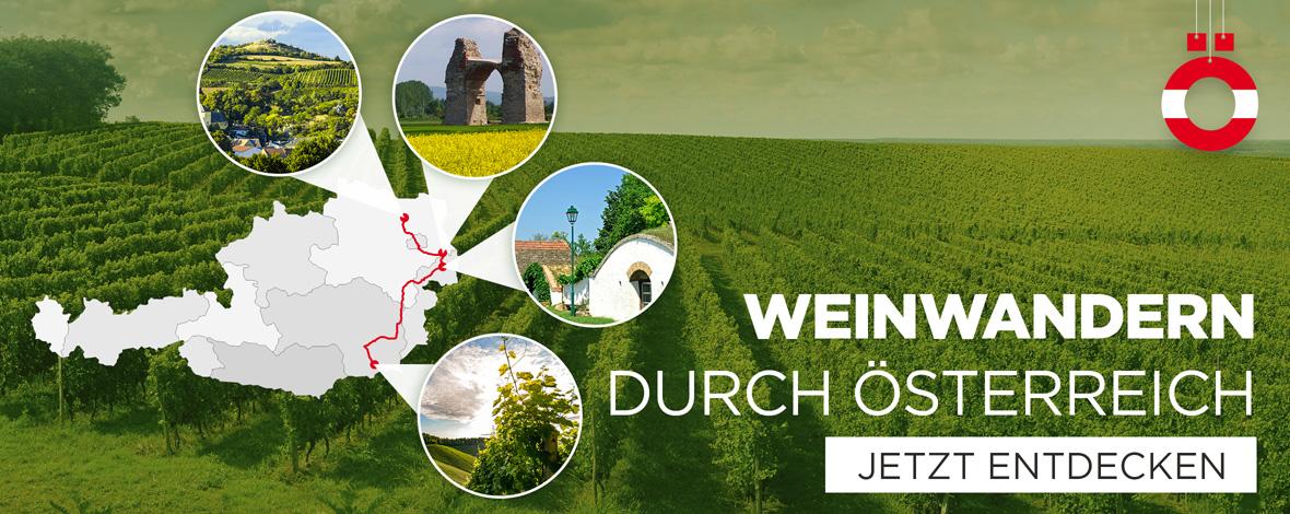 Weinwanderung durch Österreich