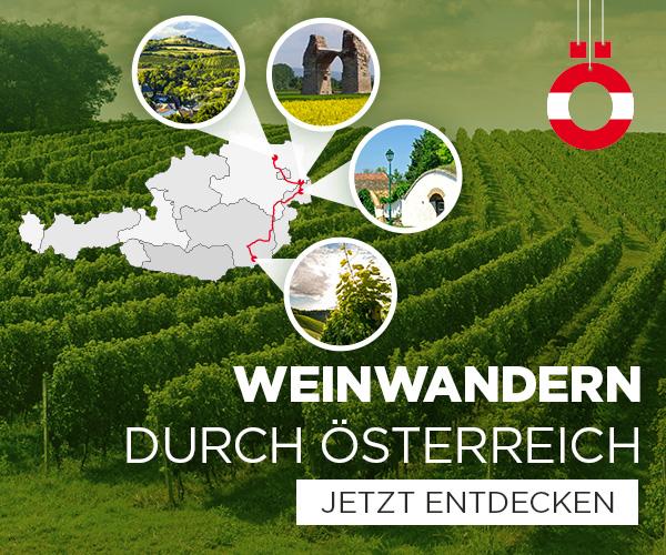 Weinwandern durch Österreich
