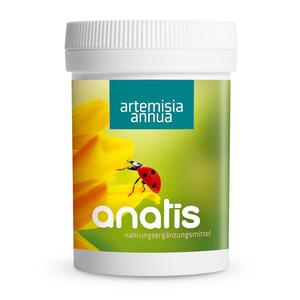 anatis Artemisia annua (90 Kps.)