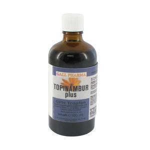 Gall Pharma Topinambur Plus Tropfen 100 ml