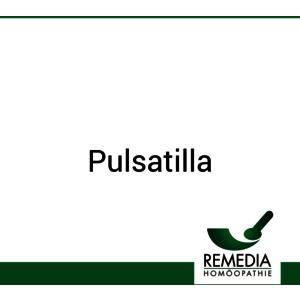 Pulsatilla Remedia 1 g D 200 Globuli