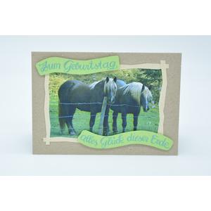 Geburtstagskarte für Pferdefreunde