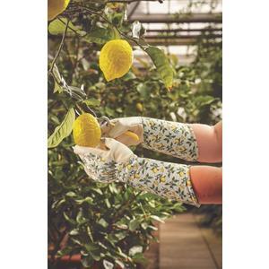 Smart Garden, Stulpenhandschuhe, lemon, 8/M