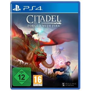 Citadel Forged with Fire (PS4) Englisch