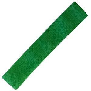 Dittmann Rubberband XL teKstil Textil Ringband Loop green/strong