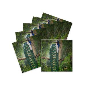 """5+1 Karten """"Blauer Pfau"""" - Kunstdruck"""