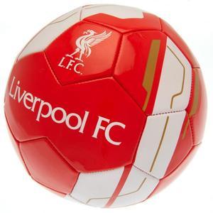 Liverpool FC Ball VR - Gr.5