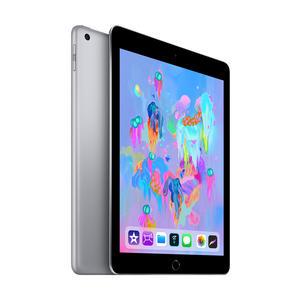 iPad Wi-Fi + Cellular 32 GB – Space Grau (6. Gen.)