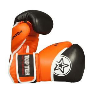 Thai-Boxhandschuhe