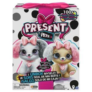 GFT Present Pets - Fancy