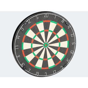 VIVA Dartscheibe Experte 46x4cm (nur für i+s) - 721-20209