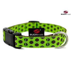 SUCHtrupp Hundehalsband MEDIUM, Klick Halsband, DOTS Limegreen-Brown