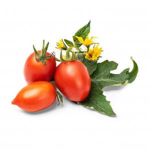 VÉRITABLE® rote mini Tomaten Bio