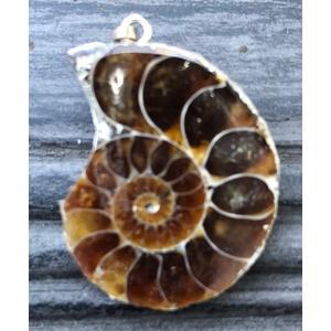 Ammonit - Anhänger - Heilsteine