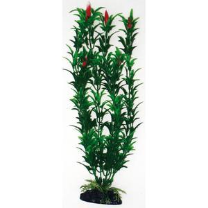 Wave Plant Classic Egeria M 18cm