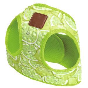 Geschirr Lime XS 24 - 32cm