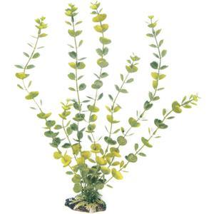Wave Plant Classic Hydrocotyle L 27cm