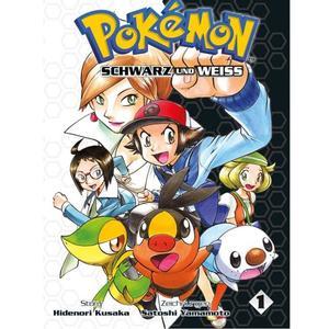 Pokémon Schwarz und Weiß BD01