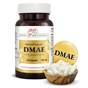 DMAE à 755mg (N,N-Dimethylethanolamin), 60 Kapseln