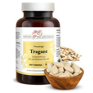 Tragant Tabletten à 750mg (Astragalus membranaceus), 260 Tabletten