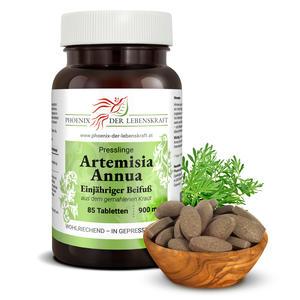 Artemisia Annua (Einjähriger Beifuß) - Tabletten, 900 mg