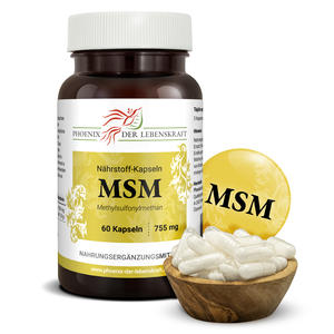 MSM à 755mg (Methylsulfonylmethan), 60 Kapseln