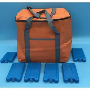 91609 Set Kühltasche 24 Liter Farbe: orange + 6 Kühlakku a´200g, Setpreis