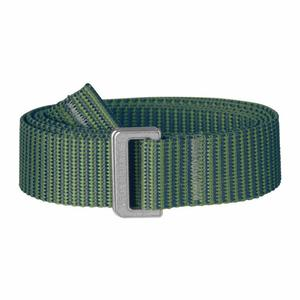 Striped Webbing Belt - fern/frost green