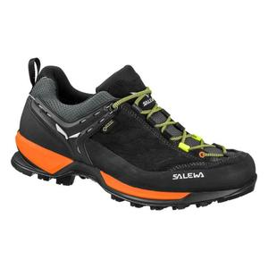 Mountain Trainer GTX - black out/holland