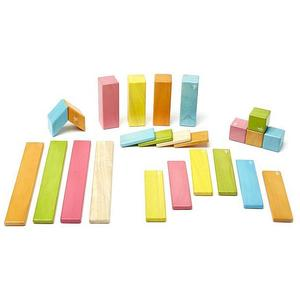 TEGU Magnetisches Holzset - 24 Teile (Farbig)