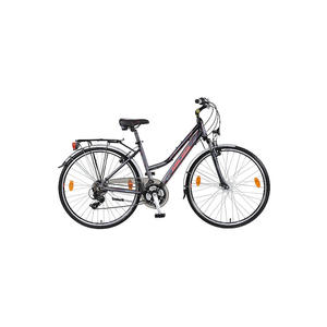 Trekking-Bike Esprit Lady 2017