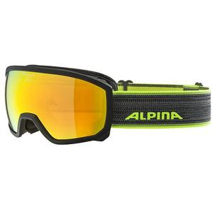 ALPINA Kinder Skibrille Scarabeo JR MM