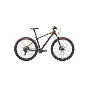 GIANT Mountainbike 29 Terrago 29 2 (GE) 2019