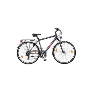 Trekking-Bike Esprit 2017