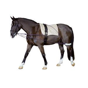 Cheval Longierhilfe Bodenarbeit Ausbildung Pony und Kleinpferde Longiersystem Longier-und Trainingssystem