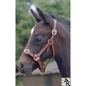 Lederhalfter Pony Pony Lederhalfter braun