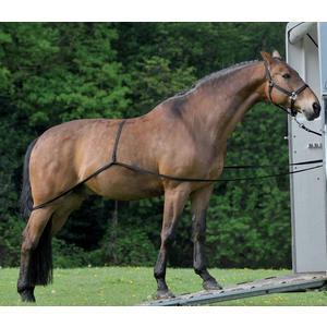 Waldhausen Verladehilfe für Pferde - Pferdeanhänger Einladehilfe
