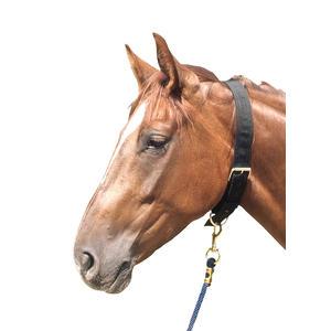 Halsriemen Nylon Anbinderiemen Anbindegurt für Pferde aus doppeltem Nylon mit Schnalle und Ring, schwarz