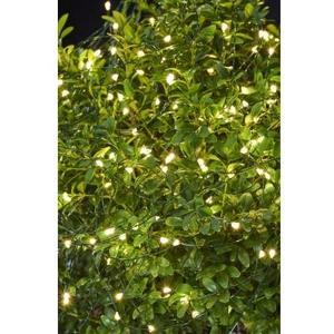 LED Lichterkette Knirke, 500 LED Outdoor, Kabel transparent, grün