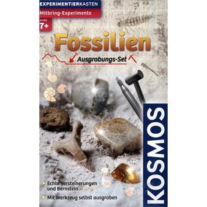 Mitbring-Experimente: Ausgrabungs-Set Fossilien