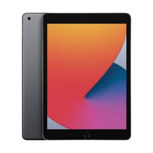 Apple iPad 10.2 WiFi 128GB Grau MYLD2 MYLD2FD/A grau/schwarz