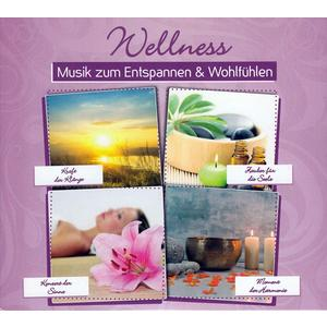 VARIOUS Wellness: Musik zum Entspannen & Wohlfühlen- DCD
