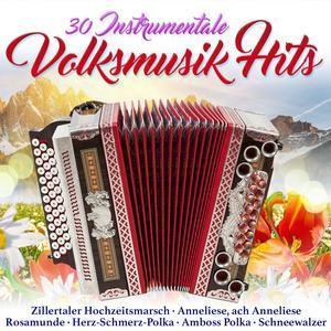 VARIOUS 30 instrumentale Volksmusik Hits- DCD
