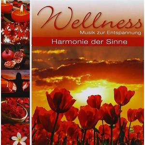VARIOUS Wellness Harmonie der Sinne- CD