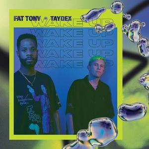 FAT TONY AND TAYDEX Wake Up- CD