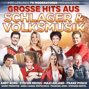 VARIOUS Große Hits aus Schlager & Volksmusik Ihrer Lieblings TV-Moderatoren- CD