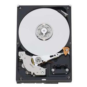 Western Digital AV 320GB, WD3200AVJS, SATA 3Gb/s, OEM